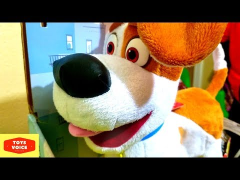 Review & Fun play of Walking Talking Max from The Secret Life of Pets  | ToysVoice