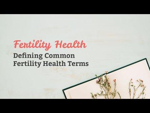 Fertility Health ~ Defining Common Fertility Health Terms