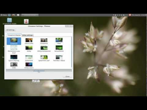 How To Add New Themes to Linux Mint 13 Cinnamon Desktop