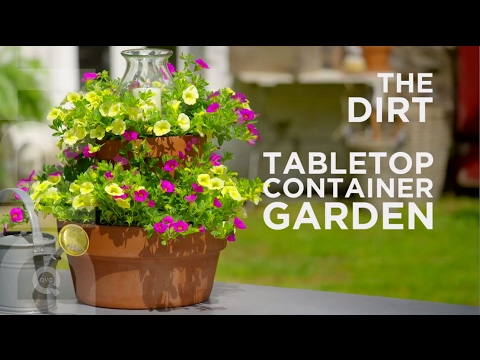 How To Make a Tabletop Container Garden: The Dirt