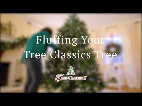 Fluffing Your Tree Classics Tree