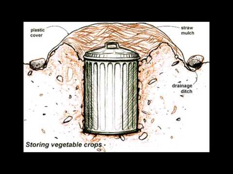 How to build a Root Cellar Part 1