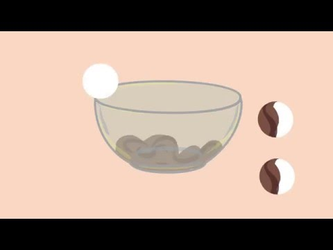 Peppermint Creams - Animated Recipes