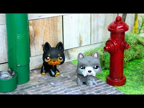 How to Make a Doll's Dog Park