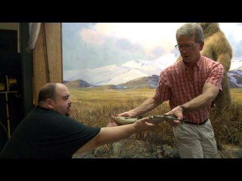 Repainting the Salmon in the Alaska Brown Bear Diorama
