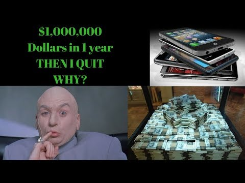$1 million dollars in 1 year selling cell phones on eBay.  WHY I QUIT