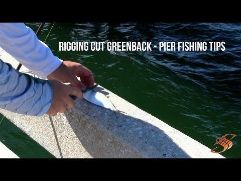 Rigging Cut Greenbacks - Pier Fishing Tips