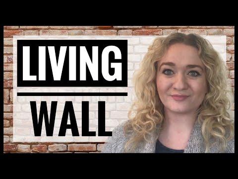 How To Make A Living Wall - Vertical Gardening - Sedum Wall - Bee Friendly Gardening