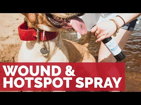 Legendary Canine Wound and Hotspot Spray