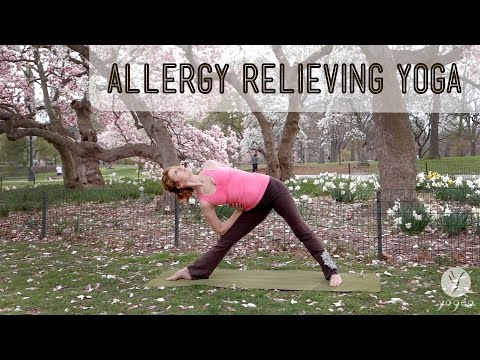 Allergy Relieving Yoga Routine: Chase Away (open level)