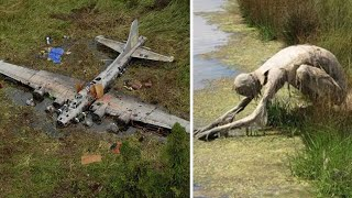 12 Strangest Things Found in Swamps