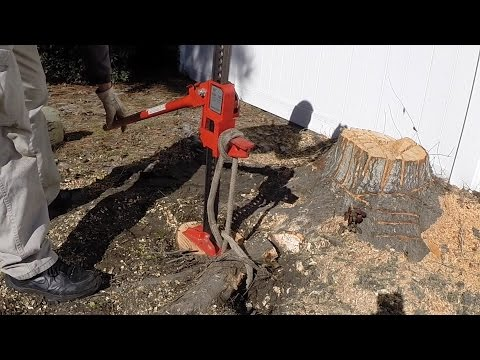 Tree stump removal by hand, part 1