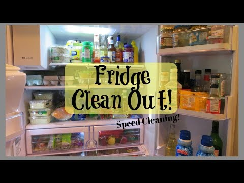 Cleaning Out the Fridge!!