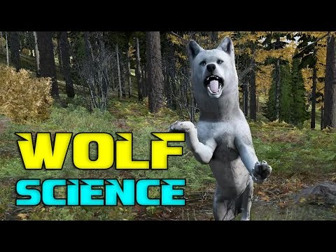 The Science of Wolves | DayZ 0.61(EXP)