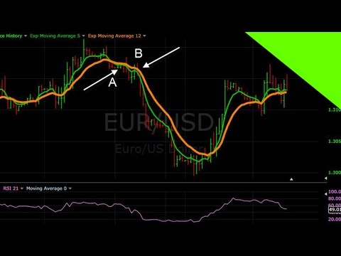 How to Find the Best Forex Robot in the Market