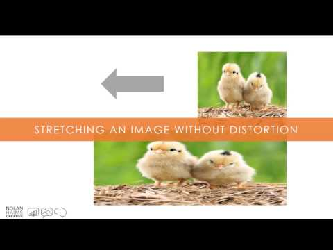 Stretching an Image without Distortion