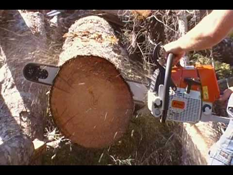 Stihl 460 Chainsaw (First Cuts)