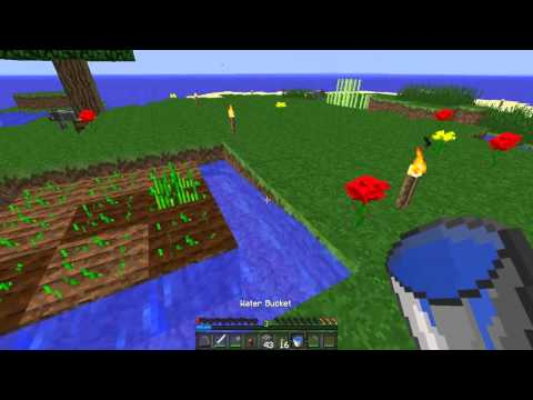 Lonely Island Survival   Episode 2   TORCHED UP!