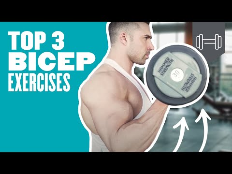 Top 3 Bicep Exercises For Big Arms | Myprotein.com