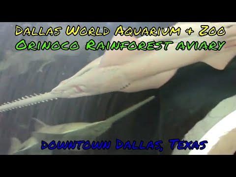 Dallas World Aquarium and Zoo - Dallas, Texas