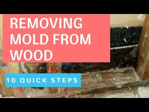 Proven Ways To Remove Mold From Wood. How To Remove Mold Inside Walls