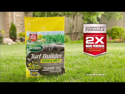 How to Feed Lawns and Kill Weeds to the Root in One Easy Step by Scotts®