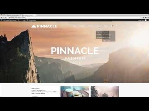 Install Demo Content - Pinnacle Premium WordPress Theme