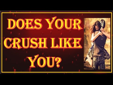 Does Your Crush Like You? - Love Test