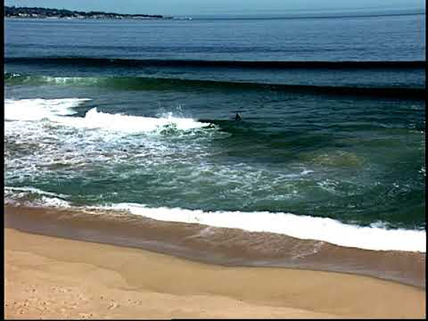 Rip Current PSA:  How to Swim to Safety
