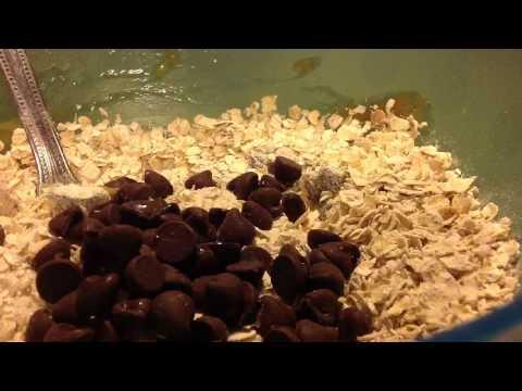 Instant Oatmeal - Granola Bars