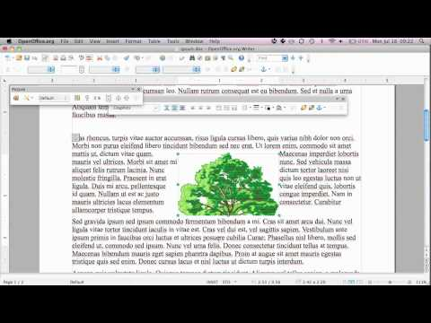 insert and edit pictures in Open Office Writer