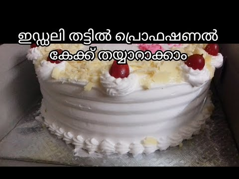 Proffetional Cake || Professional Cake Recipe In Malayalam / No. 114