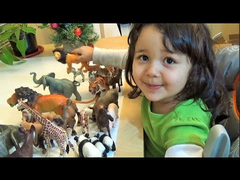 Schleich Safari My 3 Year Old Daughter Collection She Recognize a Lot of Animals