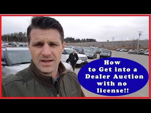 How to get into a Car Dealer Auction without a License - Flying Wheels -
