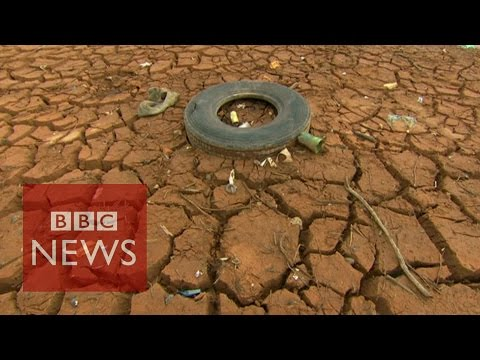'Brazil drought linked to Amazon deforestation'