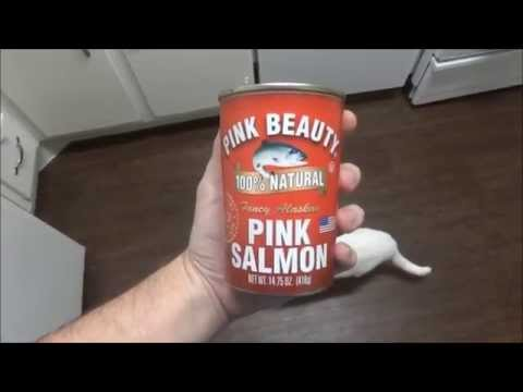 Cooking Salmon Meatloaf