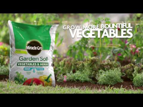 How to Use Miracle-Gro® for Vegetables & Herbs for In-Ground Gardening
