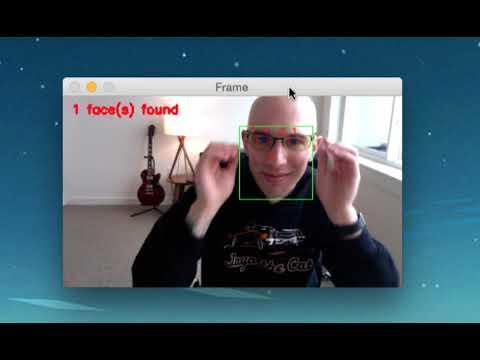 (Faster) Facial landmark detector with dlib demo
