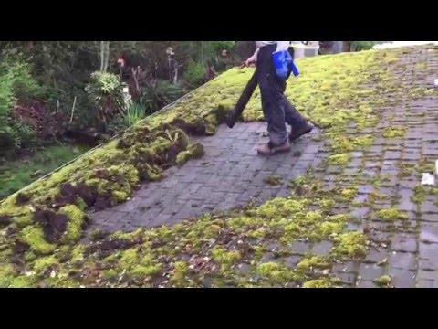 Roof Clean Moss Removal