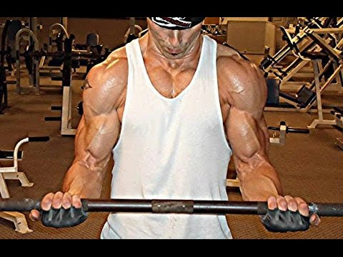 How To Get Bigger Arms - For Beginners