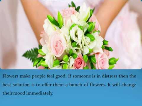 Buy Cheap Flowers Melbourne