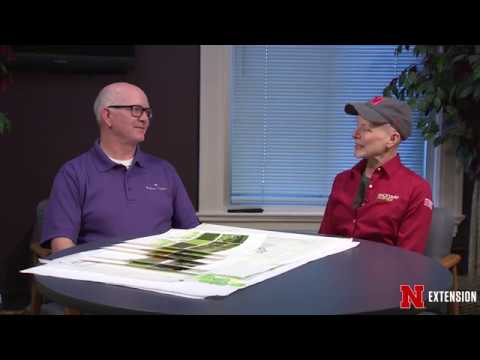 A Sense of Place - Landscape Design with Bryan Kinghorn