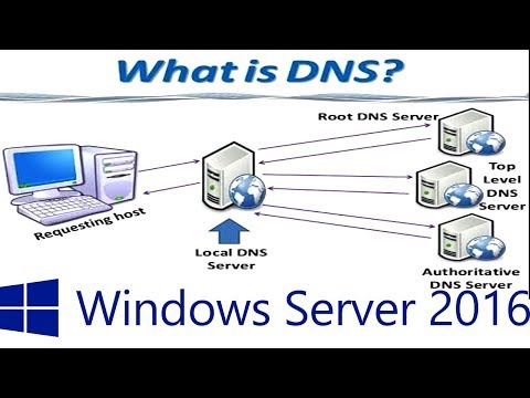What is DNS - 29