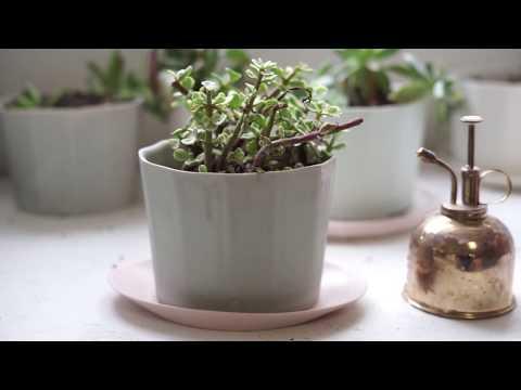 Slipcasting a Pottery Planter