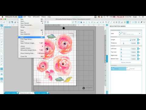 How to Print and Cut Vinyl Decals. Watercolor Flower Decals DIY