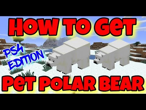 How to Get a PET POLAR BEAR in Minecraft - PS4 Edition - How to Have a Pet Polar Bear