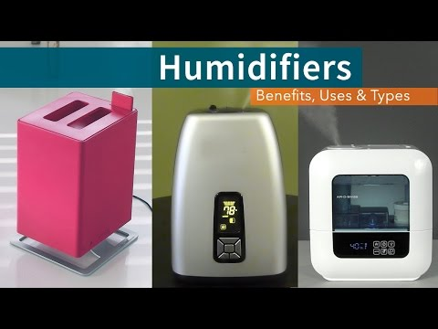 Humidifiers: Benefits, Uses & Types | Sylvane