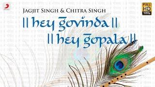 Hey Govinda Hey Gopala - Jagjit Singh   Chitra Singh   (Hindi)