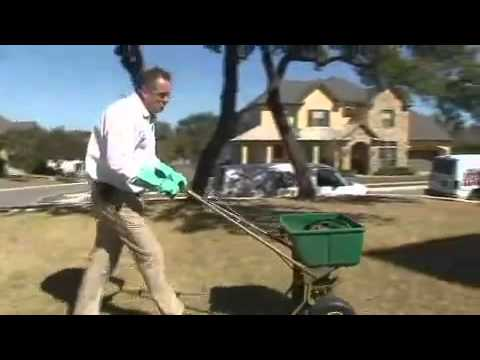 Treat Your Lawn with Fertilization and Insect Control from ABC San Antonio