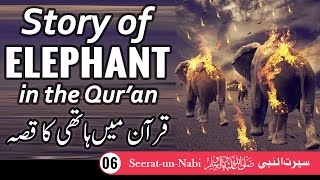 (6) Story of Elephant - Seerat-un-Nabi - Seerah in Urdu - IslamSearch.org